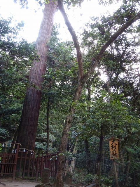 八重垣神社19