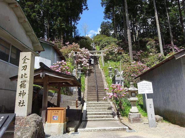 弁財天石楠花の丘3