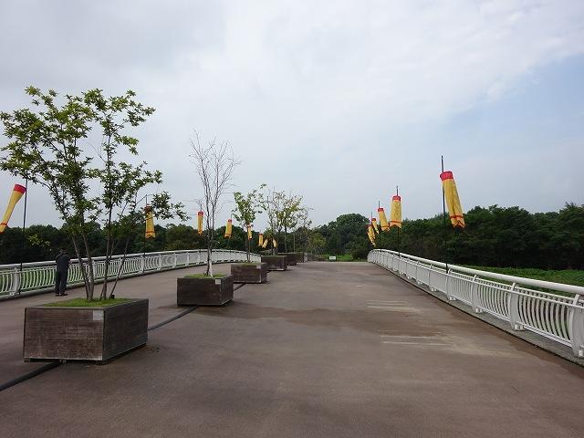 吉野ケ里遺跡5