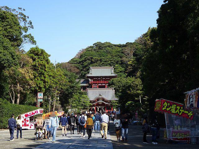 鶴岡八幡宮22