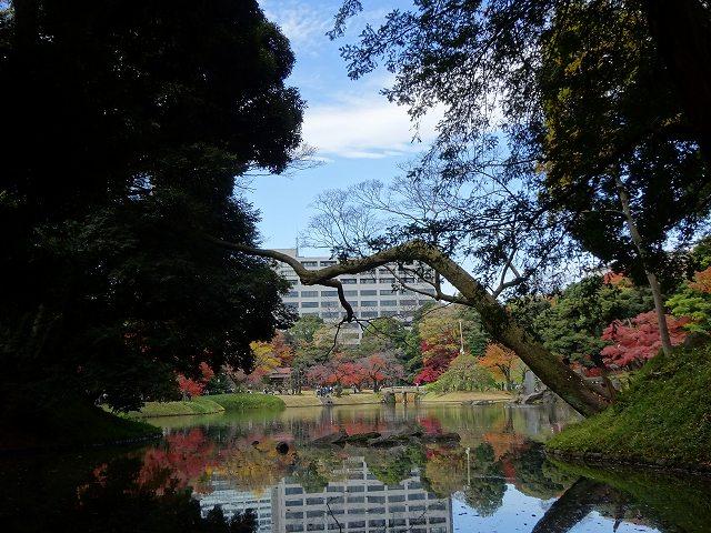 小石川後楽園12