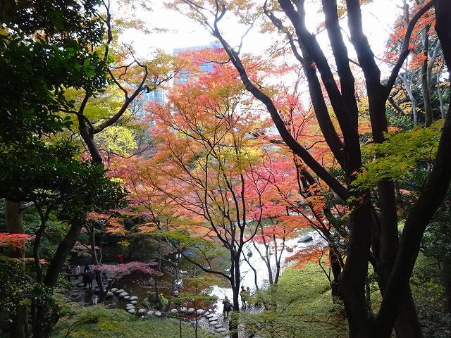 小石川後楽園23