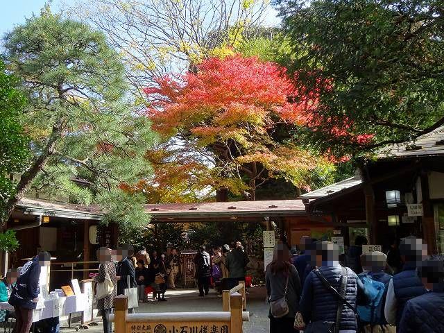 小石川後楽園3