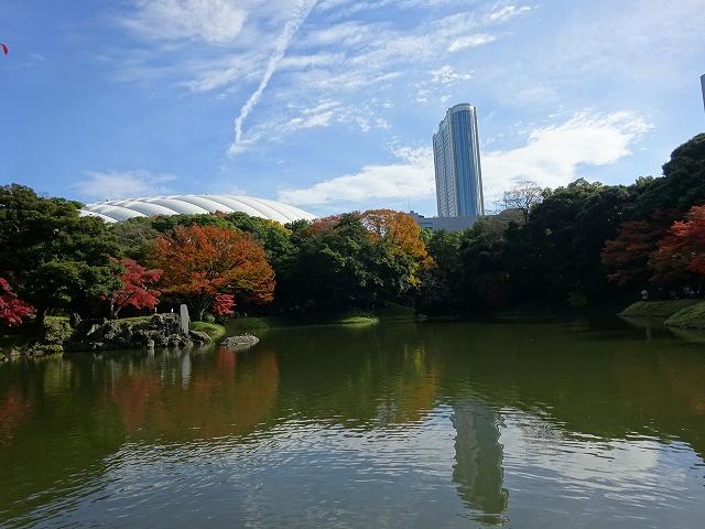 小石川後楽園8