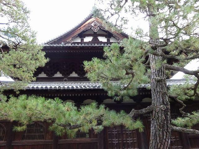 大徳寺13