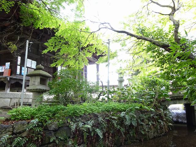 長浜八幡宮9