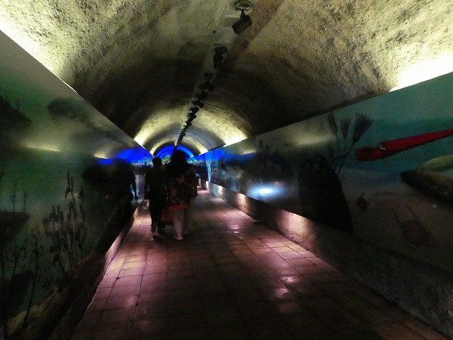 秋芳洞29