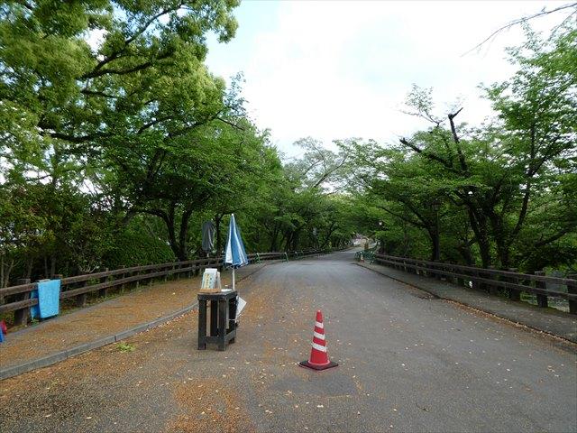 熊本城14