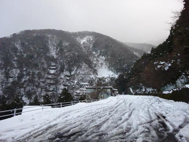 養老の滝12