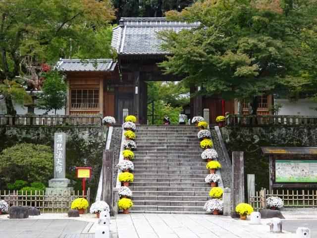修善寺温泉12