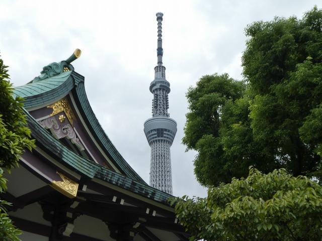 高木神社22