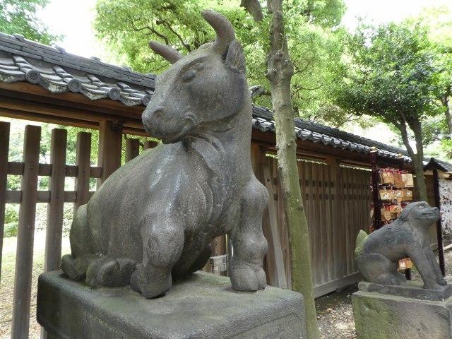 牛嶋神社6