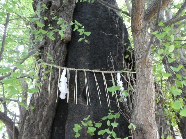 飛木稲荷神社8