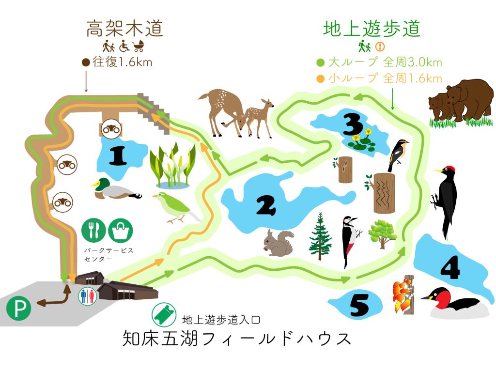 知床五湖30