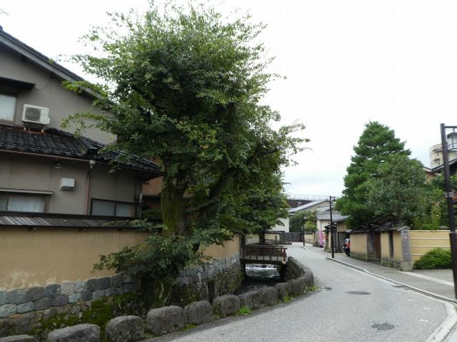 長町武家屋敷界隈4