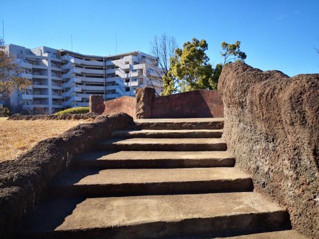 大森貝塚遺跡公園5