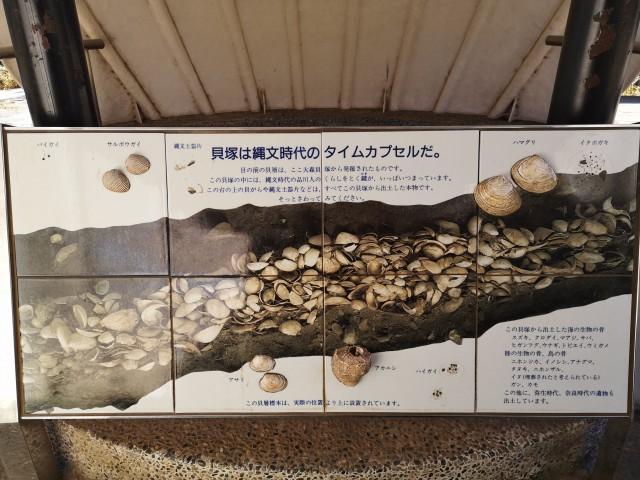 大森貝塚遺跡公園8