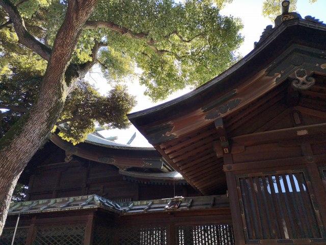 大井鹿嶋神社16