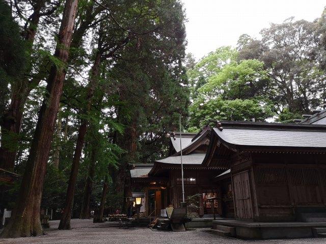 高千穂神社22