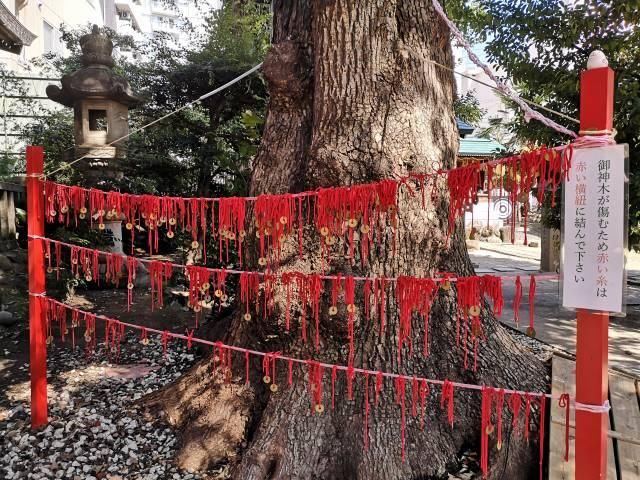 三輪神社10