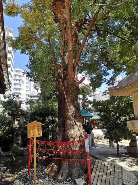 三輪神社4