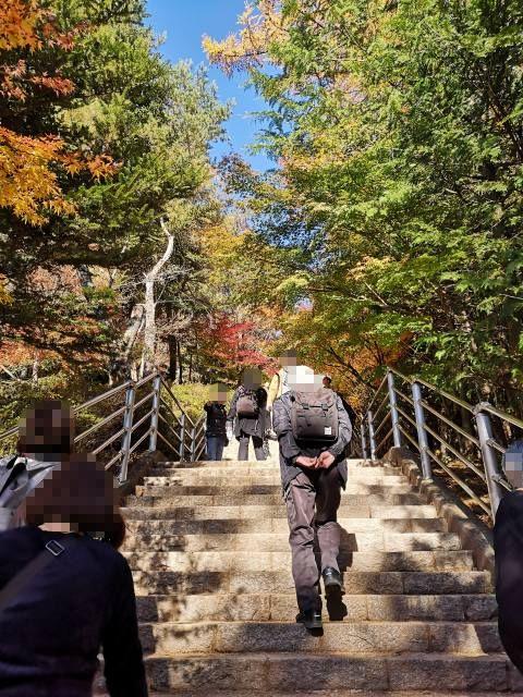 新倉山浅間公園10