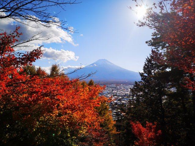 新倉山浅間公園18