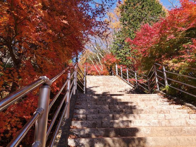 新倉山浅間公園20
