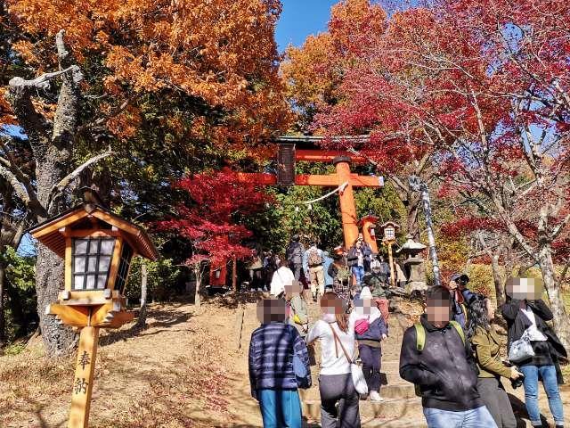 新倉山浅間公園5