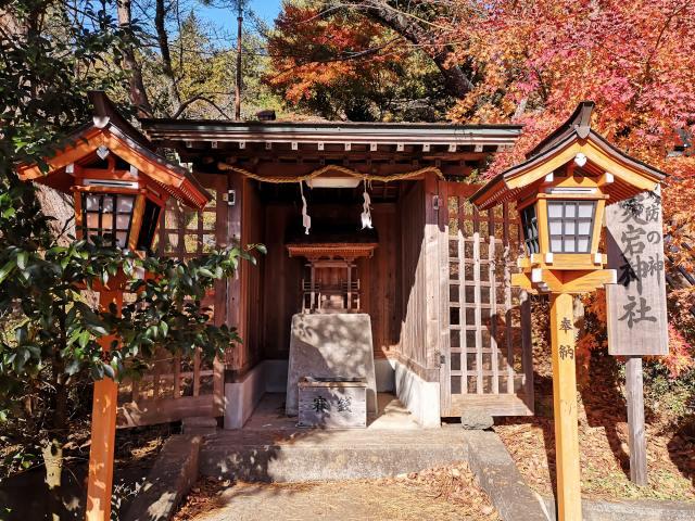 新倉山浅間公園9