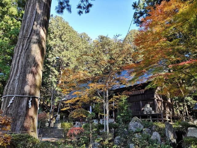 河口浅間神社11