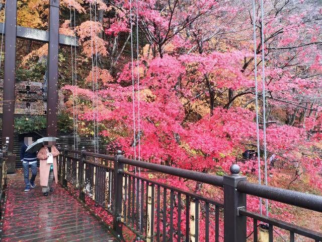 紅の吊り橋10