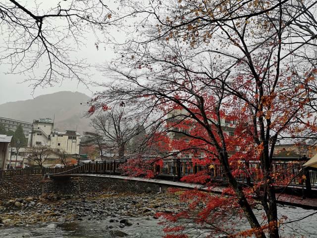 紅の吊り橋15