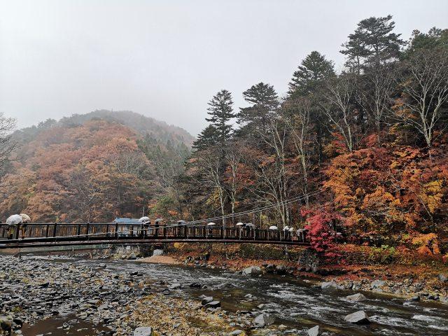 紅の吊り橋4