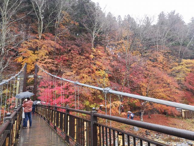 紅の吊り橋7
