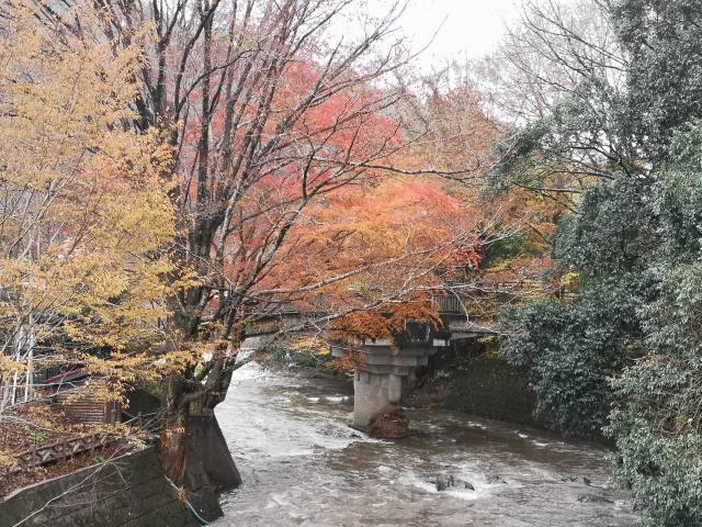 龍門の滝 13