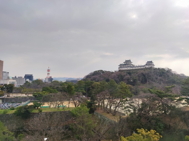 和歌山城1