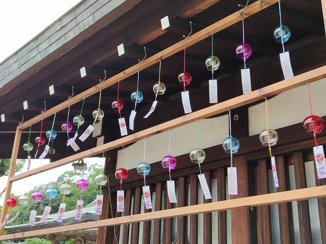 鶴羽根神社10